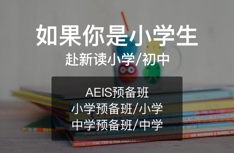 赴新读小学 | AEIS预备班 | 国际学校直通车